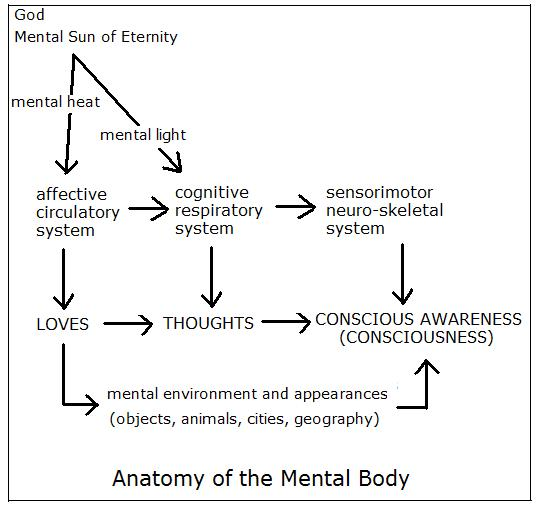 28+ [ The Anatomy Of Anxiety Diagram ] | anatomy of anxiety ... Schematic Psychology on